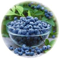 borovnice- flavonoidi