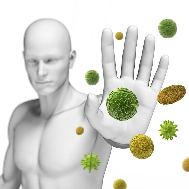 imunski sistem-minka gantar